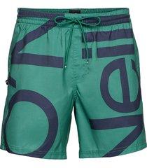pm cali zoom shorts surfshorts grön o'neill
