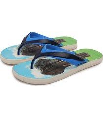 sandalia azul-multicolor colore