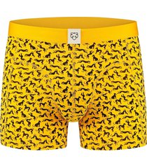 boxer brief dolf