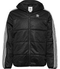 jacket padd m gevoerd jack zwart adidas originals