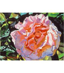 "david lloyd glover vibrant pink blossom canvas art - 15"" x 20"""