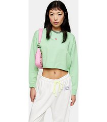 petite green watermelon sweatshirt - green