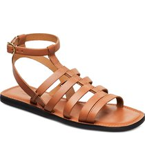 stb-tao gladiator shoes summer shoes flat sandals shoe the bear