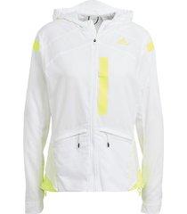 blazer adidas marathon translucent jack