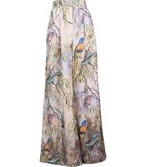 parakeets candescent shirt