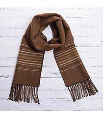 men's alpaca blend scarf, 'andean clouds in brown' (peru)