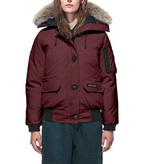 women's canada goose chilliwack hooded down bomber jacket with genuine coyote fur trim, size medium (8-10) - purple