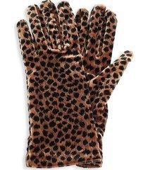 portolano women's velvet cheetah-print gloves - brown black