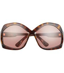 tom ford cheyenne 68mm oversize butterfly sunglasses in shiny havana /light pink at nordstrom