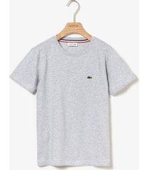 camiseta lacoste regular fit cinza - cinza - menino - dafiti