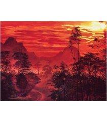 "david lloyd glover amazon sunset canvas art - 37"" x 49"""