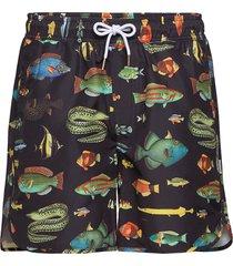 swim shorts sandhamn fish badshorts svart dedicated