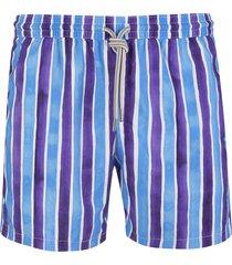 capri code blue and purple striped swimsuit