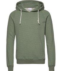 elm small owl hoodie sweat - gots/v hoodie trui groen knowledge cotton apparel