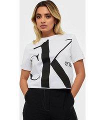 calvin klein jeans big logo modern straight crop t t-shirts