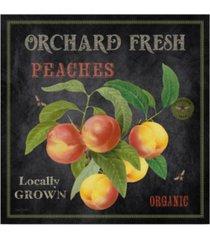 "jean plout 'orchard fresh peaches' canvas art - 24"" x 24"""