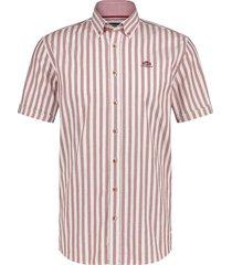 26211240 1129 shirt