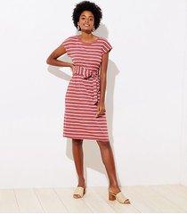 loft petite stripe ribbed belted midi dress
