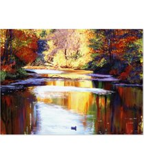 "david lloyd glover 'reflections of august' canvas art - 24"" x 18"""