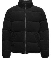 corduroy puffer jacket fodrad jacka svart original penguin