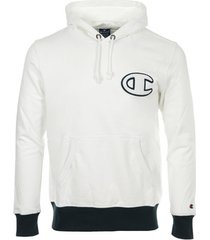 sweater champion hooded sweatshirt