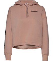 hooded crop top hoodie trui roze champion