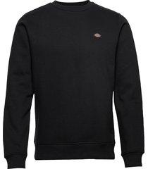 new jersey sweat-shirt tröja svart dickies