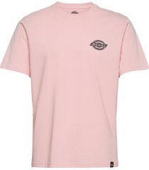 bigfork t-shirts short-sleeved rosa dickies