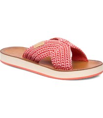 flatville sandal shoes summer shoes flat sandals rosa gant