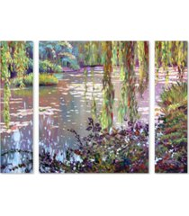 "david lloyd glover 'homage to monet' multi panel art set large - 25"" x 30"" x 2"""