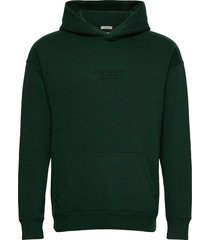 anf mens sweatshirts hoodie trui groen abercrombie & fitch