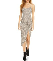women's bb dakota on the prowl party animal print ruched dress