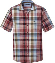 overhemd babista bordeaux::olijf::lichtblauw