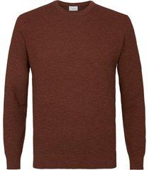 profuomo pullover crew neck dark rust