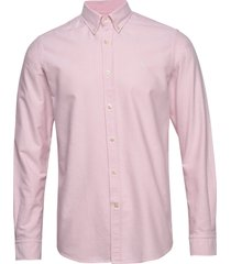 andré button down shirt overhemd business roze morris