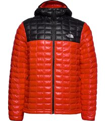 m tbll eco hdie fodrad jacka röd the north face
