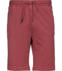circolo 1901 shorts & bermuda shorts