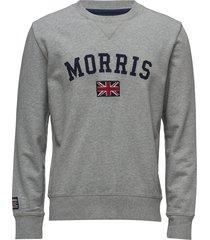 brown sweatshirt sweat-shirt tröja grå morris