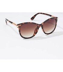 loft squared cateye sunglasses