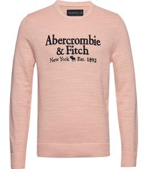 elevated emb logo sweat-shirt tröja rosa abercrombie & fitch