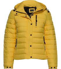 classic fuji padded jacket fodrad jacka gul superdry