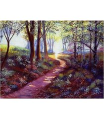 "david lloyd glover pathway into the light canvas art - 37"" x 49"""