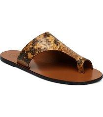 rosa printed snake shoes summer shoes flat sandals brun atp atelier