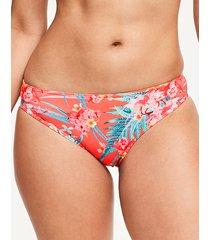wild sun palm bikini brief