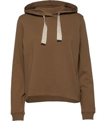 sweatshirts hoodie brun marc o'polo
