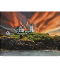 "lois bryan cape neddick nubble lighthouse canvas art - 15"" x 20"""