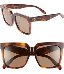 women's celine 55mm polarized square sunglasses - classical havana/ brown