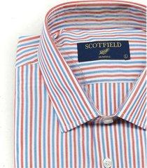 camisa blanca scotfield miami rayas sf fit