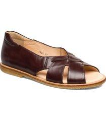 sandals - flat - open toe - op shoes summer shoes flat sandals brun angulus
