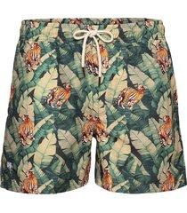 roar swim shorts badshorts grön oas